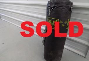 punching bag sold
